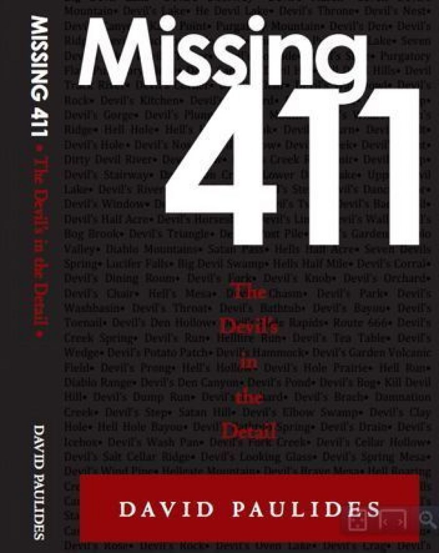 Missing 411-The Devil's in the Detail by David Paulides (2014, Paperback)